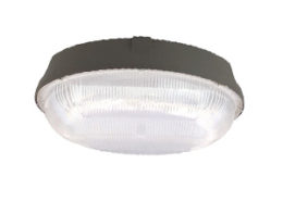 led canopy ceiling light